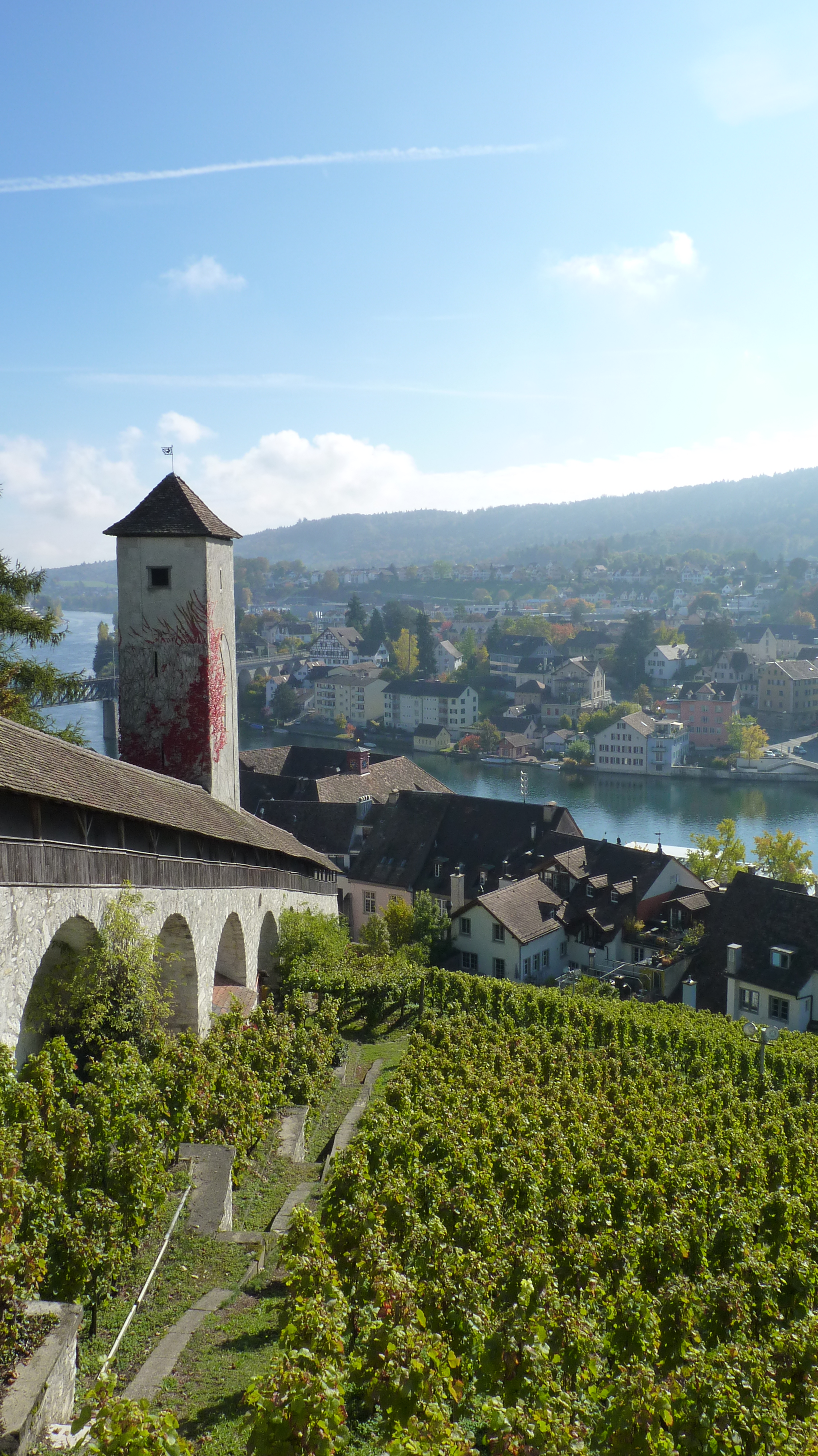 View from Schaffhausen's castle on the vineyards surrounding it