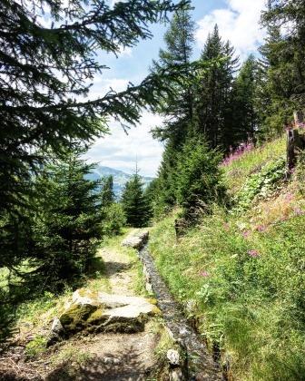Le bisse de Tsa-Crêta coulant au-milieu d'un paysage de montagne
