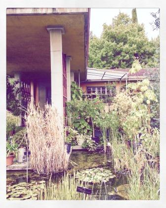 Photo of a building and a pond in Lausanne's botanical garden