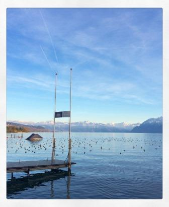Photo a view of Lac Léman from its banks