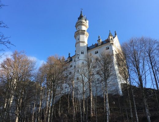 White Neuschwanstein castle on top of a hill surrounded by leafless trees