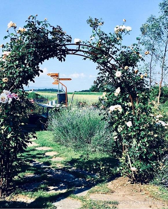Photo d'un chemin dallé entouré d'une entrée de roses rose pâle montées sur un arche