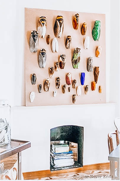 Picture of many terracota cicada pinned to a beige board above a small fireplace