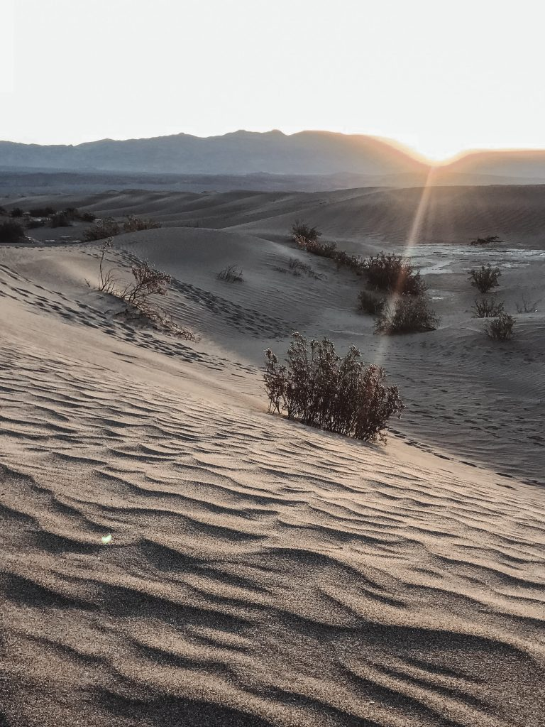Picture of desert at sunset
